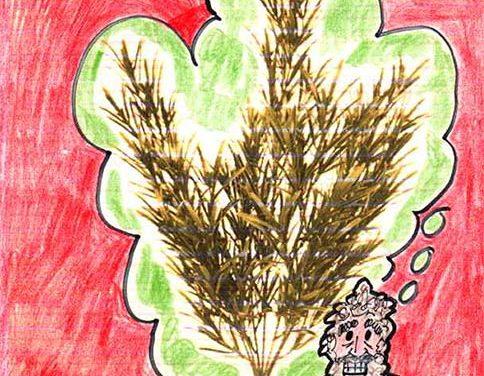 Christmas, Kwanza and Hanukkah for Non-Carnivores