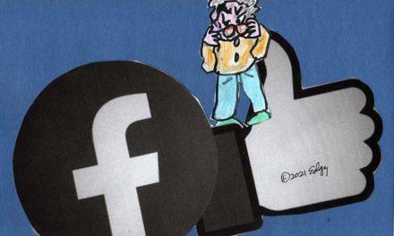 Facebook Oversight Board's Oversights
